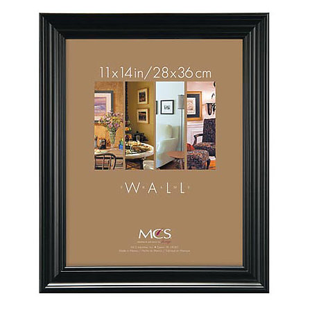 Monarch Poster & Wall Frames